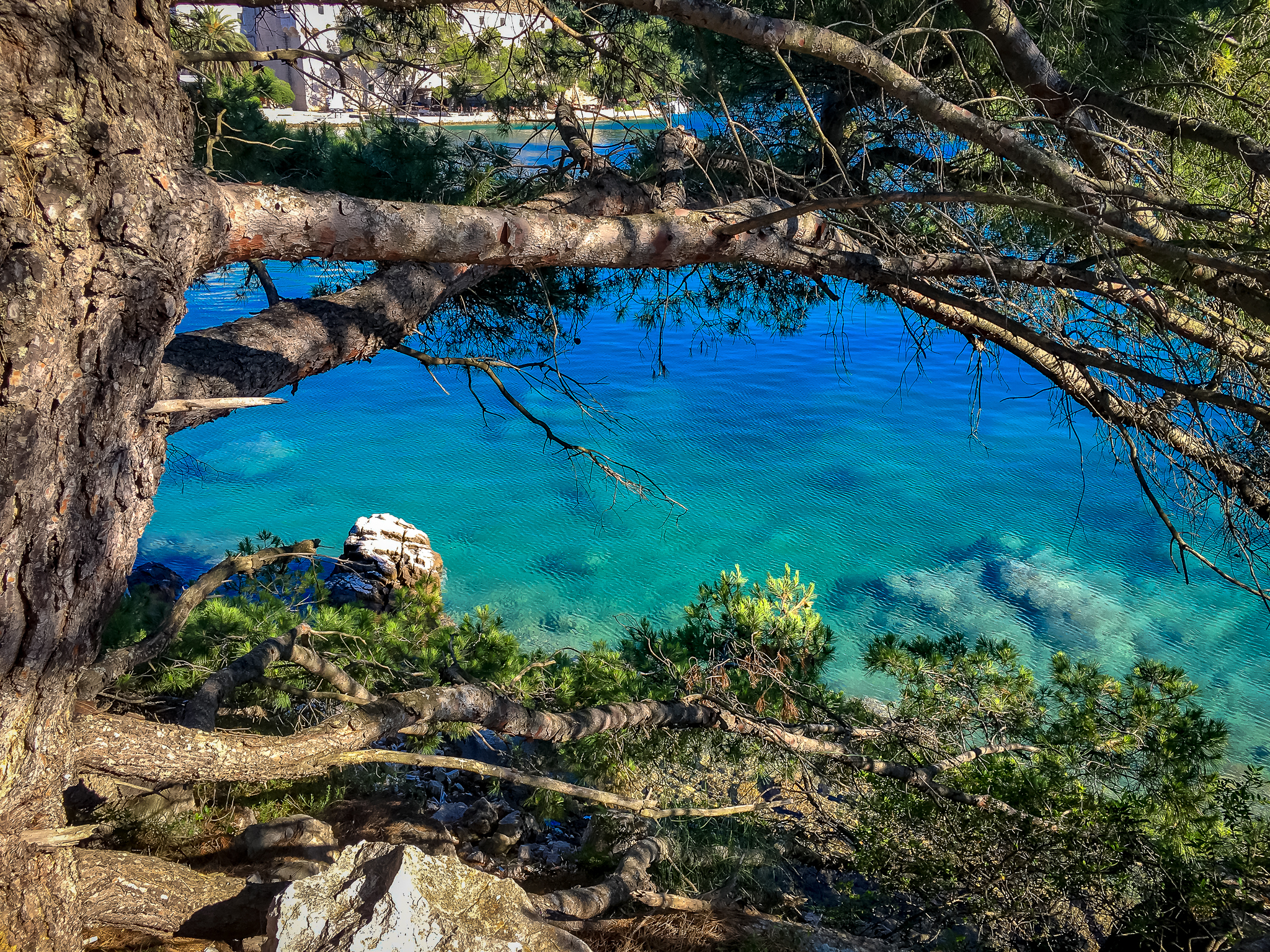 Larger lake on mljet - crystal clear salt water lake