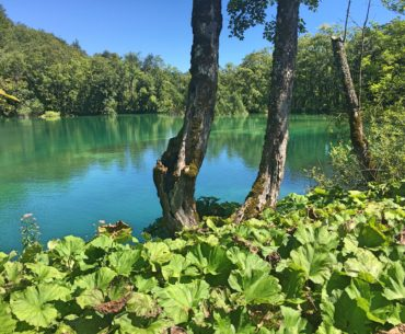 National Park Plitvice Lakes – Is it worth a visit?
